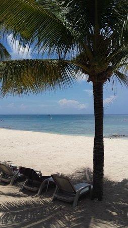 Secrets Aura Cozumel : beach