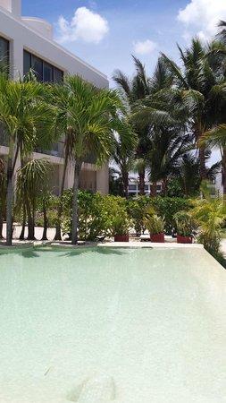 Secrets Aura Cozumel: hotel grounds