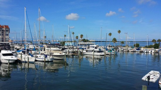 Best Western Plus Yacht Harbor Inn: Beautiful views