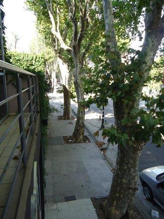 Tango Lodge: Vista da varanda
