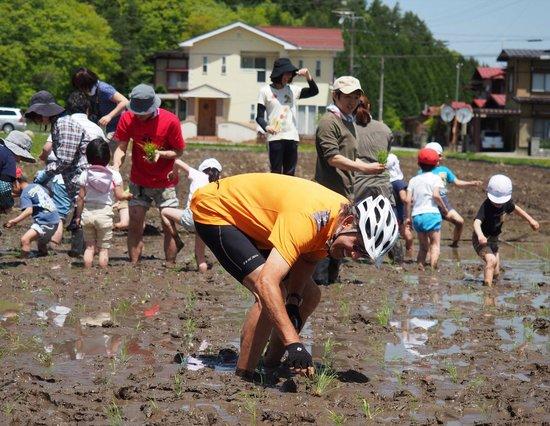 Japan Biking - Day Tours: Planting rice with the kindergarten kids