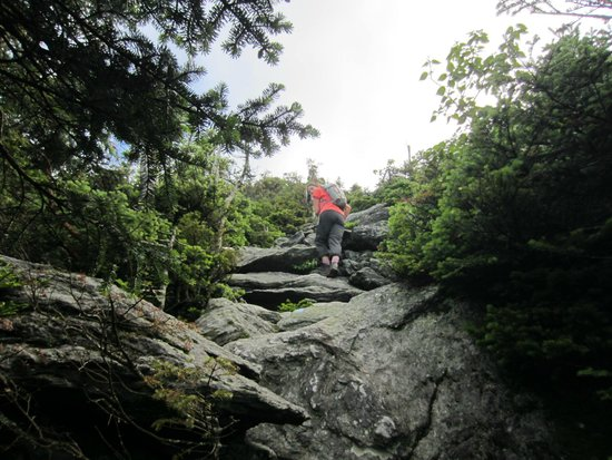 Mount Mansfield : up and up cowles trail