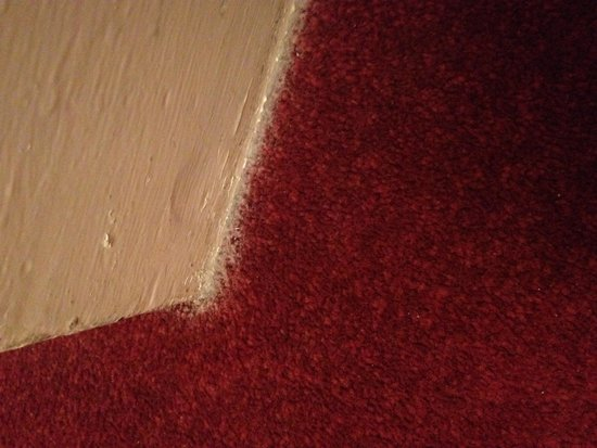 Holliers Hotel- state of floor