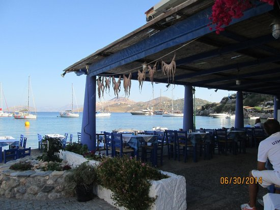 Zorbas Taverna: Delicious View