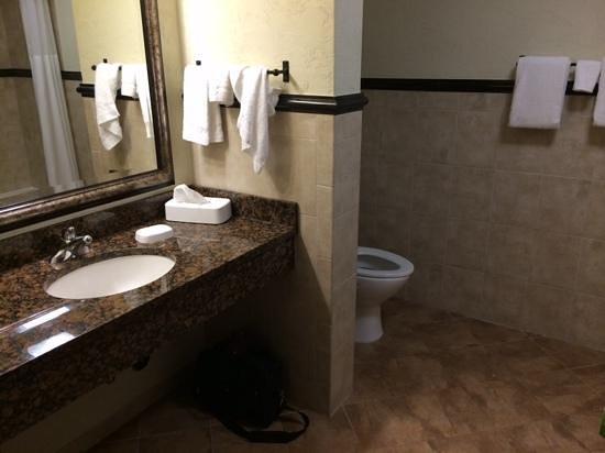 Drury Inn & Suites San Antonio Near La Cantera Parkway : rm 801 bathroom