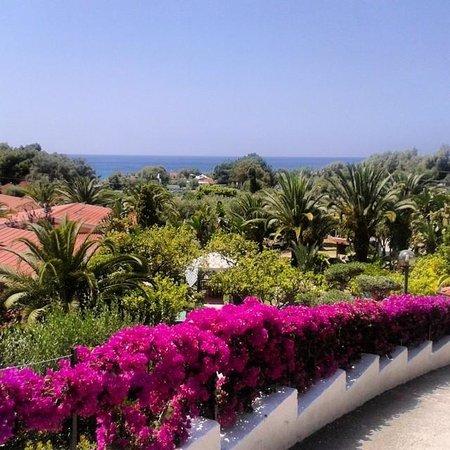 Blu Tropical: Vista dall'hotel