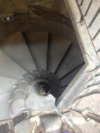Metropolitan Cathedral (Catedral Metropolitana): Escalera para subir al campanario