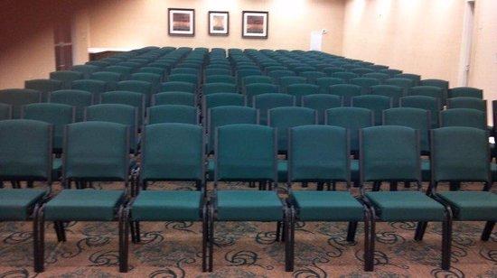 Holiday Inn Dothan: Meeting Room