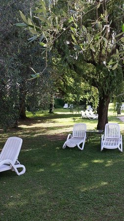 Hotel Palme & Suite: Parco