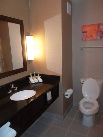 Holiday Inn Express Hotel & Suites Columbus - Easton : Guest Bathroom