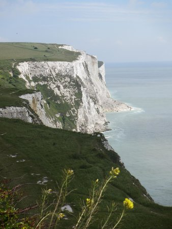 Falaises blanches de Douvres : The Cliffs