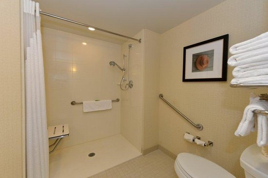 Holiday Inn Express Hotel & Suites Waterloo - St Jacobs : Wheelchair Accessible Shower