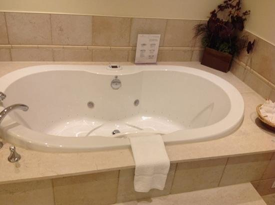 Algoma's Water Tower Inn & Suites: spa suite tub