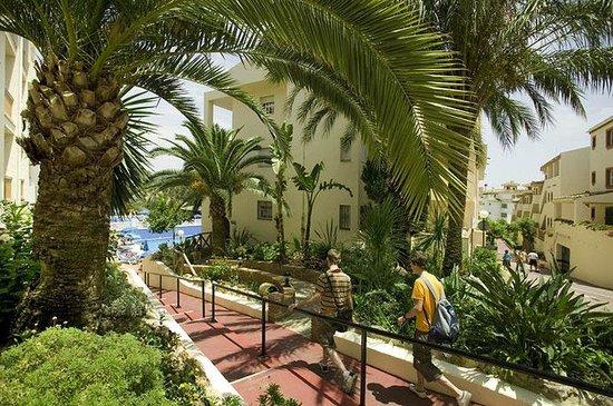 Club Marbella/Regency Palms Crown Resort: Gardens