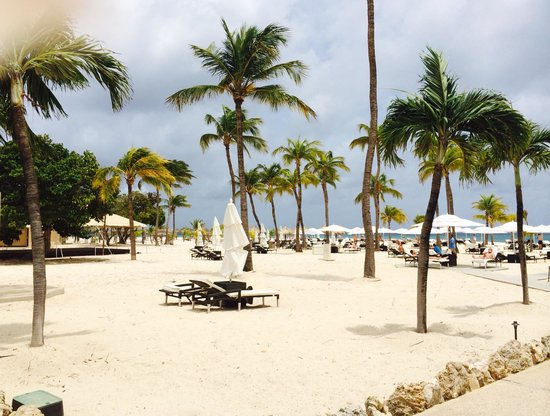 Bucuti & Tara Beach Resort Aruba : Heaven