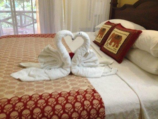 Nayara Resort Spa & Gardens : A new towel animal every day :)