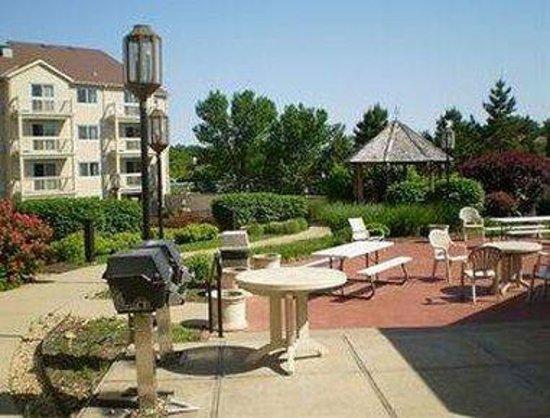 Days Inn - ST. Louis/Westport MO: Courtyard