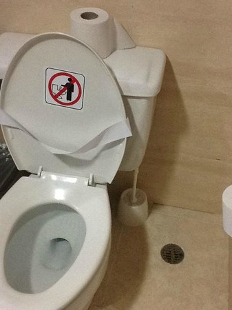 Bavaro Princess All Suites Resort, Spa & Casino: nasty toilet brush....