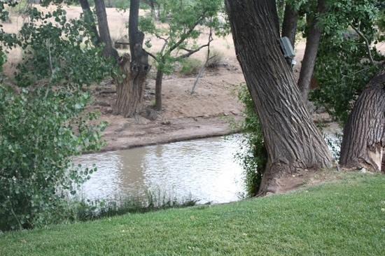 Desert Pearl Inn: River side suite view