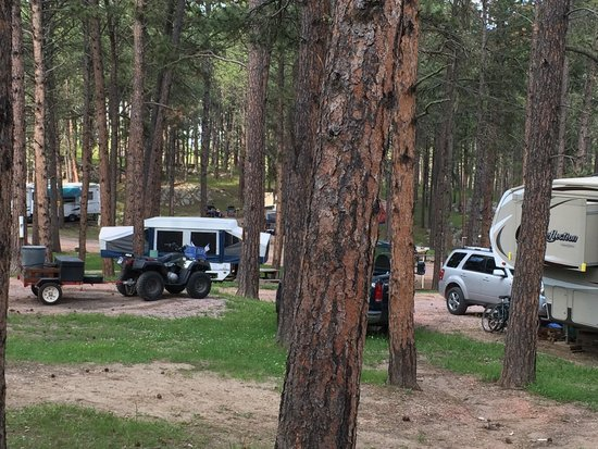 Big Pine Campground: Great camp sites!