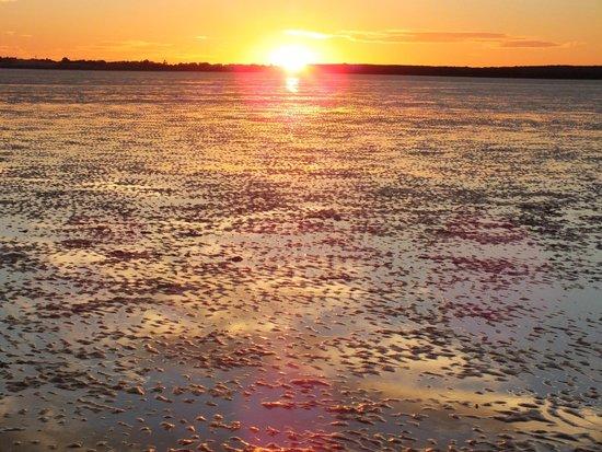 Broome Hovercraft: Sunset over Broome mud flats