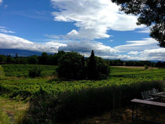 Domaine de Marotte: The View