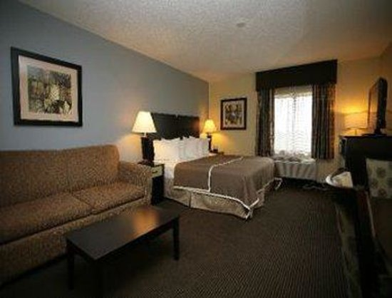 Baymont Inn & Suites Dale: One King Bed Room