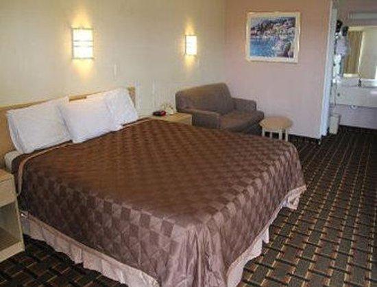 Knights Inn Punta Gorda: 1 King Bed Guest Room
