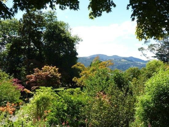 Glenfalloch Woodland Gardens : Views and Birdsong