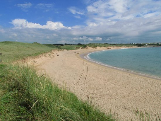 Harlyn Sands Holiday Park: Constantine beach
