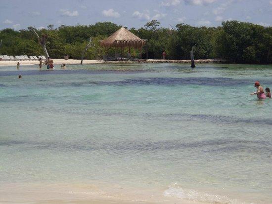 Ocean Maya Royale: lagoon along from hotel