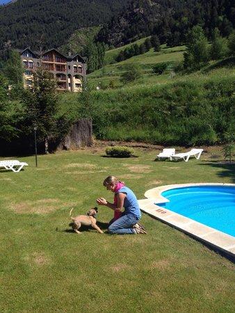 Xalet Verdu Hotel: Parte lateral piscina. Se admiten mascotas