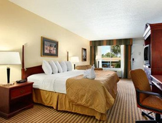 Altamonte Springs Hotel and Suites: Standard King Room With Sofabed