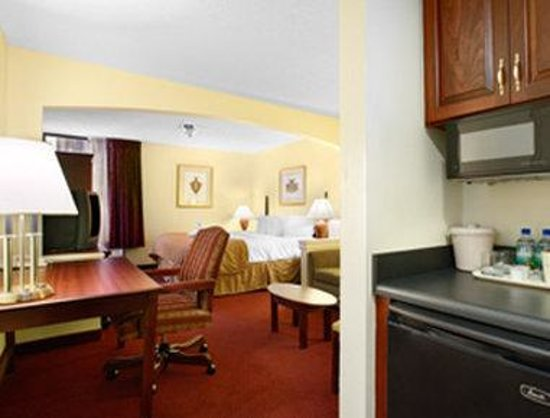 Altamonte Hotel and Suites: Business King Guest Room