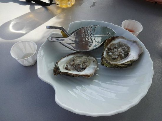 Shaw's Landing: SL Oyster