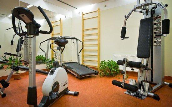 Mamaison Residence Belgicka Prague: Fitness room