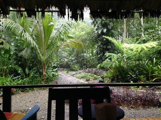 La Kukula Lodge: View from Breakfast Area