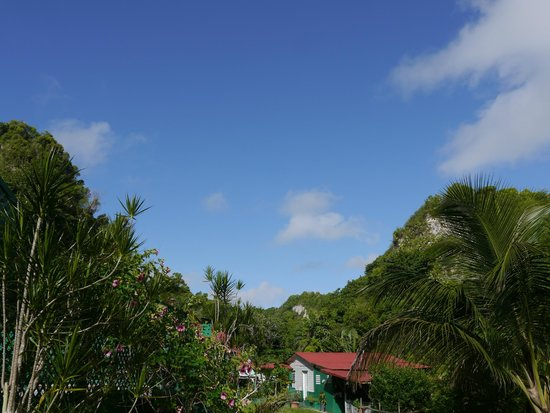 TJ Ranch : View towards the old coffee plantation