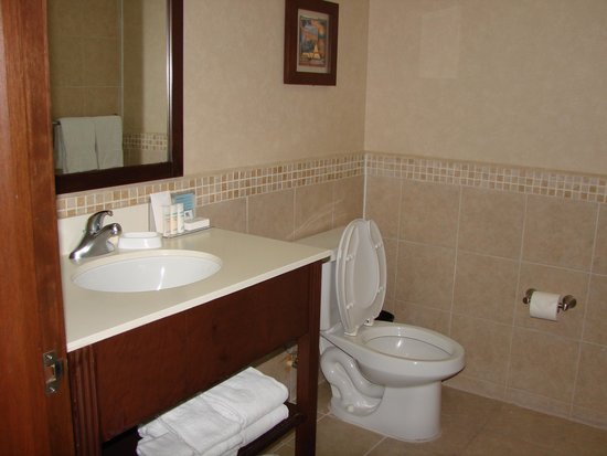 Hampton Inn & Suites Mexico City - Centro Historico: bath room