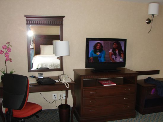Hampton Inn & Suites Mexico City - Centro Historico: TV inbed room