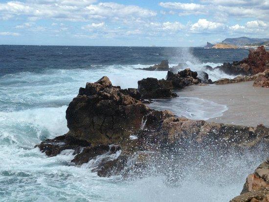 Hotel Le Delos : Une nature splendide