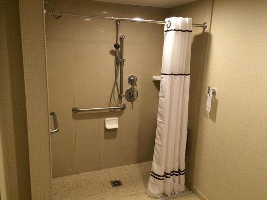 Disability access shower - Picture of Wyndham San Diego Bayside, San ...