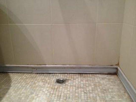 The Village Coconut Island Beach Resort: Dirty Bathroom