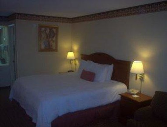 Super 8 _ Manchester : 1 King Bed Guest Room