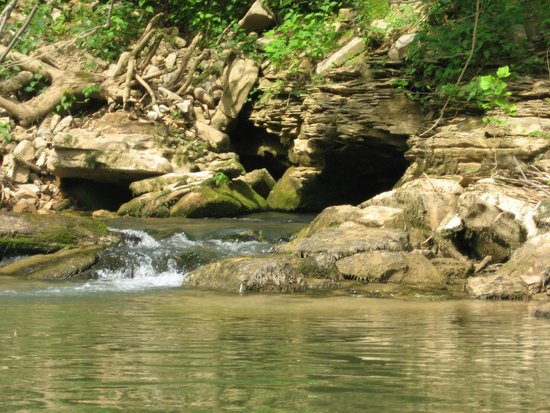 Munfordville, เคนตั๊กกี้: tops of caves where water is flowing in the river