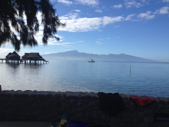 Sofitel Moorea Ia Ora Beach Resort: From our deck