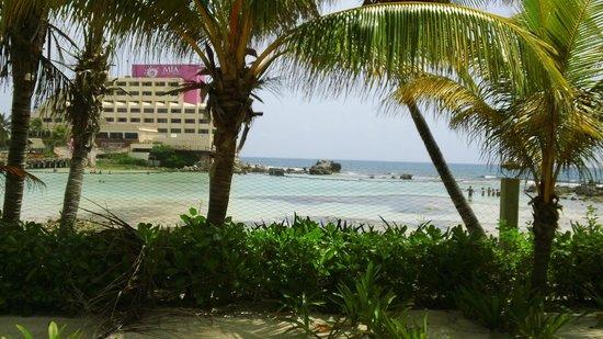 Hotel Villa Kiin : View from hammock area