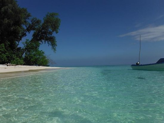 Conflict Bay Lodge: Clear Marau Sound water.