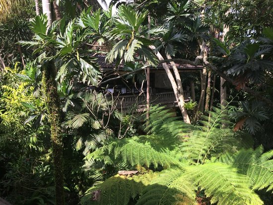ONEWORLD retreats Kumara: View looking across from my room to the dining area.