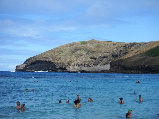 Hanauma Bay Nature Preserve: Most people stay in closer to shore